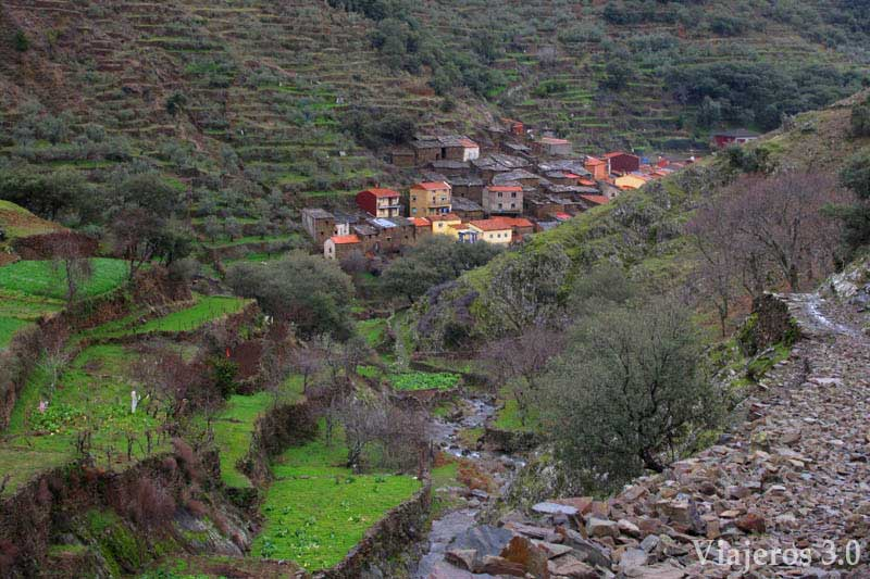 El-Gasco-(5)