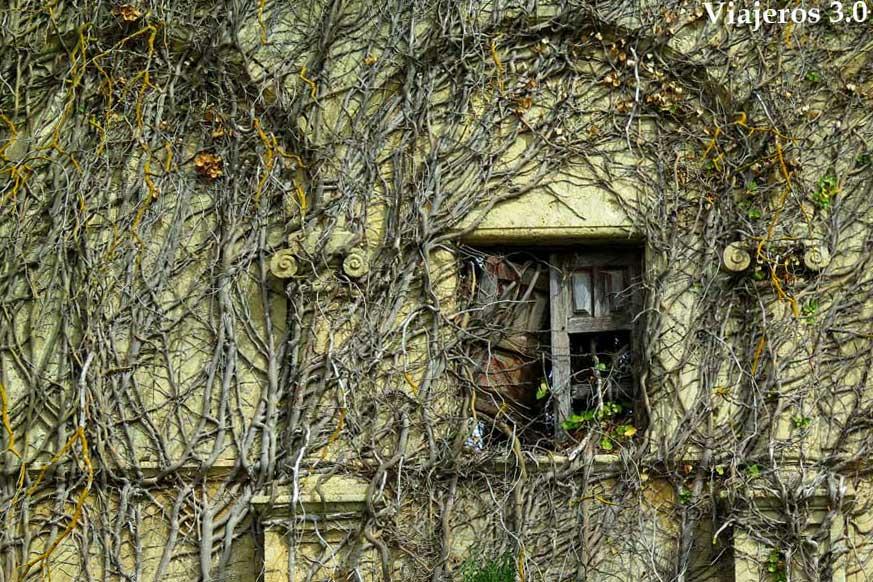 la naturaleza fundida con el monasterio de Rioseco