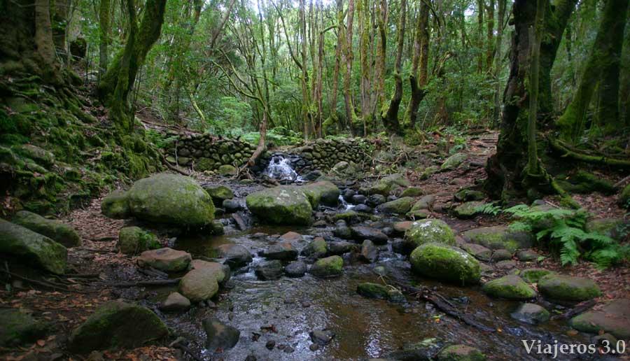 Las Mimbreras, ruta por Garajonay