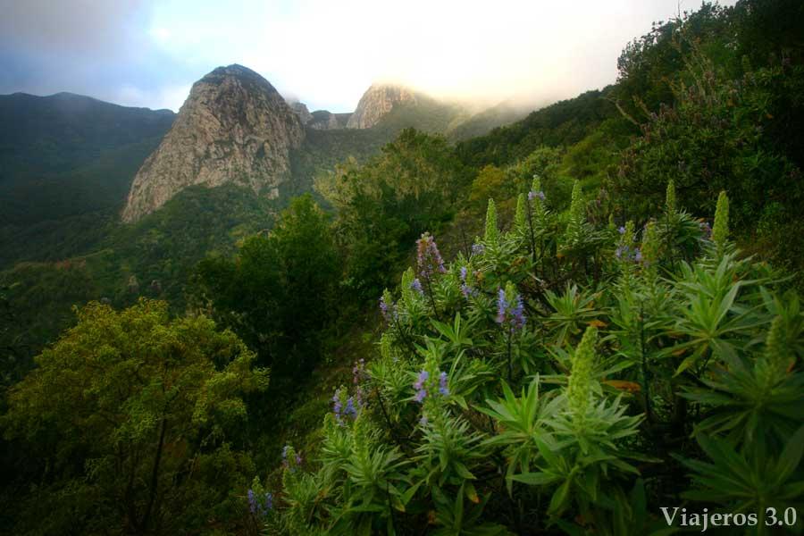 Mirador el Bailadero en ruta por Garajonay