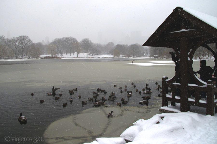 Lago helado de Central Park, nevada en Nueva York.