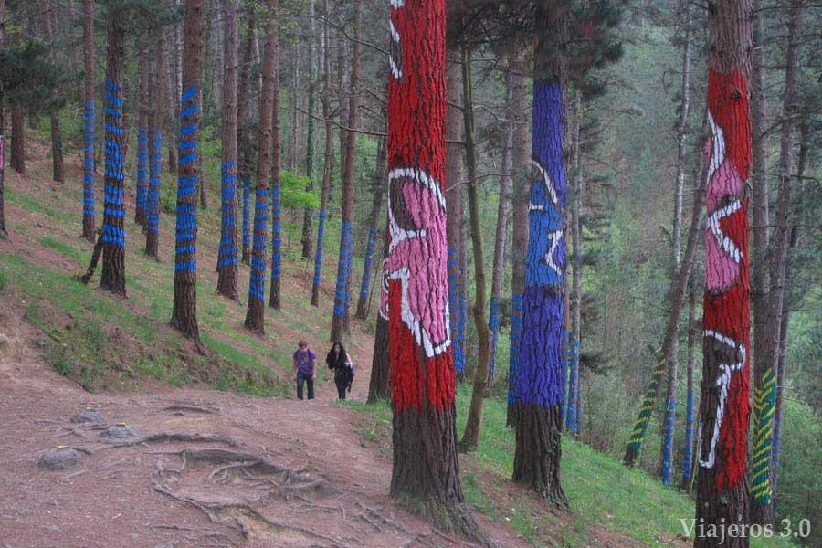 Bosque de Oma, Reserva de Urdaibai en dos días