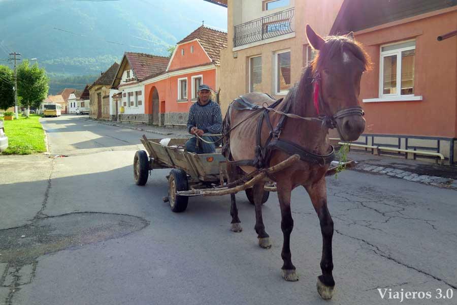 carromatos en Rumanía