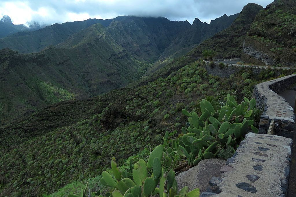 Mirador de Manaderos, los mejores miradores de La Gomera