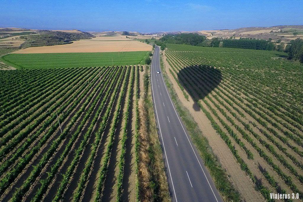 viñedos, volar en globo por La Rioja