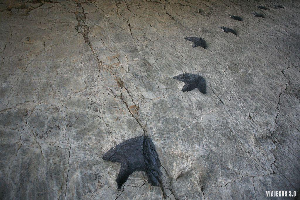 ruta de los dinosaurios, que ver cerca de Arnedo