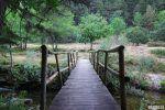 senderos de la Sierra de Cebollera