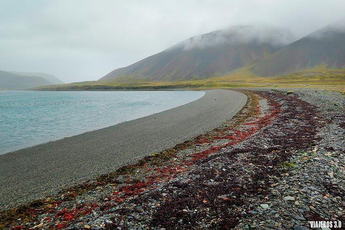 Playa en la Península de Snaefellsnes.