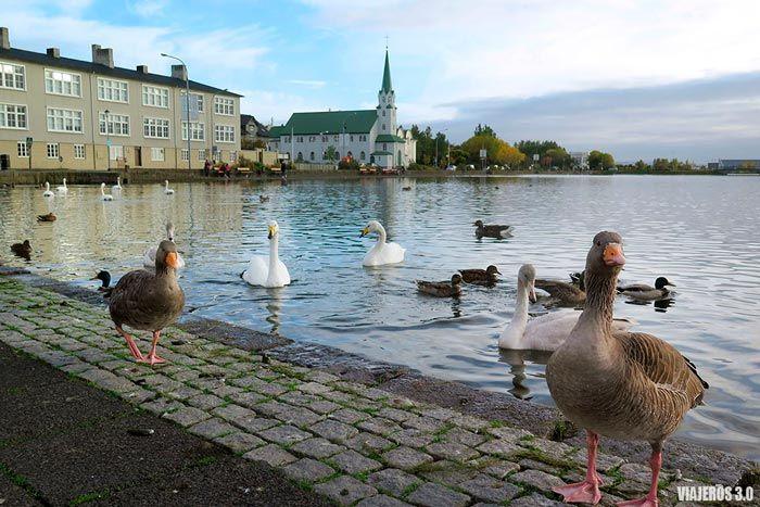 Lago Tjörn, que ver en Reikiavik en 1 día