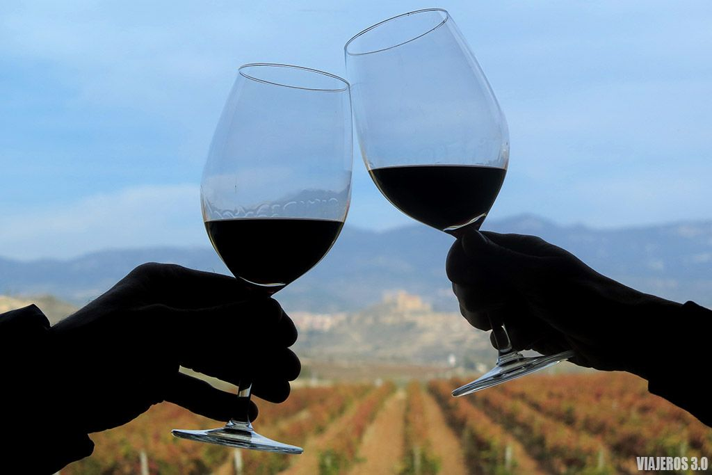 actividades de enoturismo en La Rioja