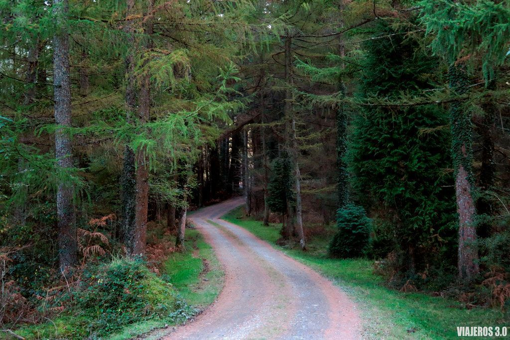 valles y bosques, que ver en Gorbea