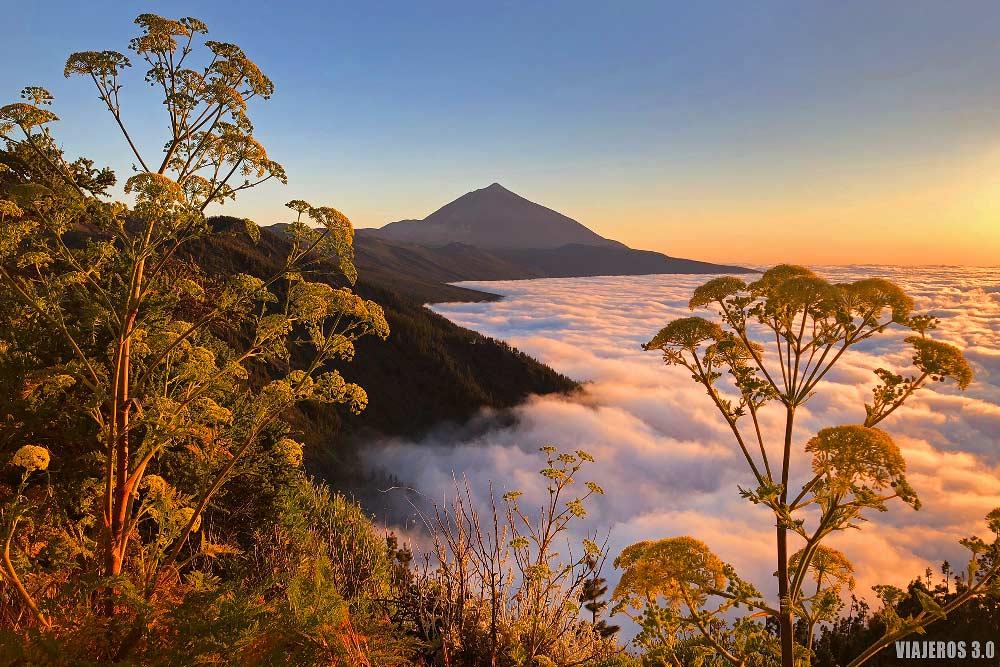 Tenerife, qué isla canaria visitar