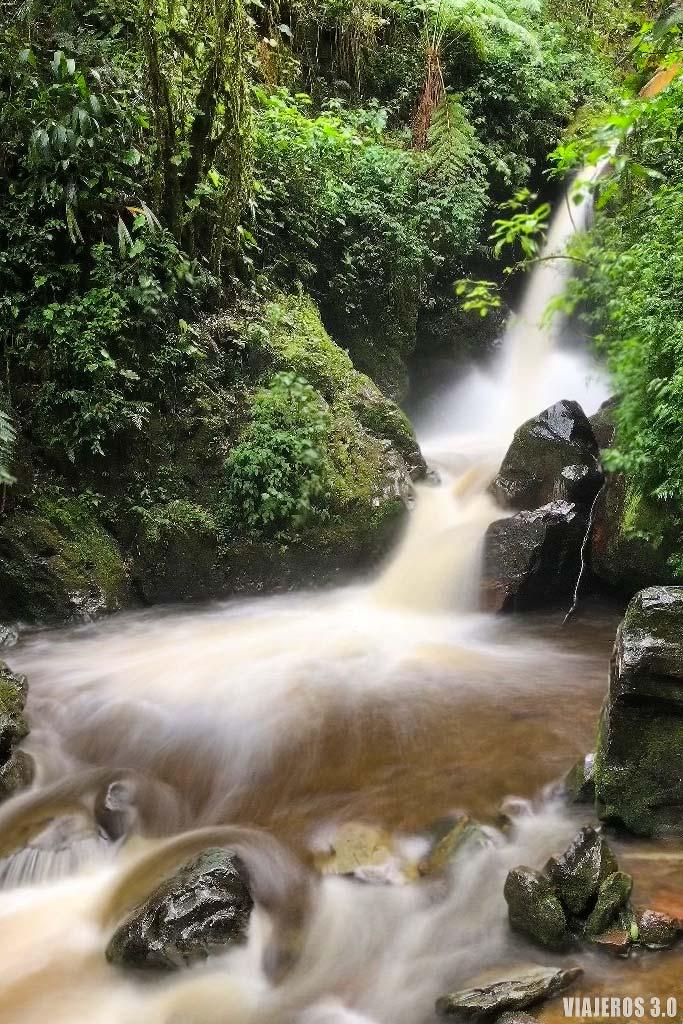 Cascadas río Quindío, Salento y el Valle de Cocora
