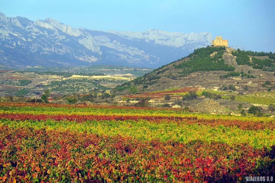 Vistas Castillo de Davalillo, viñedos de La Rioja en otoño