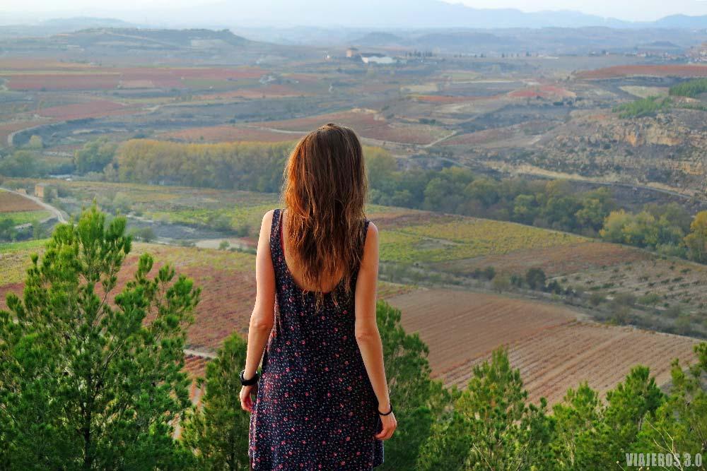 Paisajes, viñedos de La Rioja en otoño