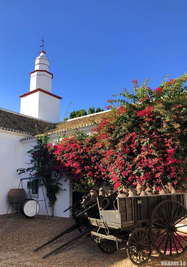 Oleoturismo en Sevilla, patios de la Hacienda Guzmán