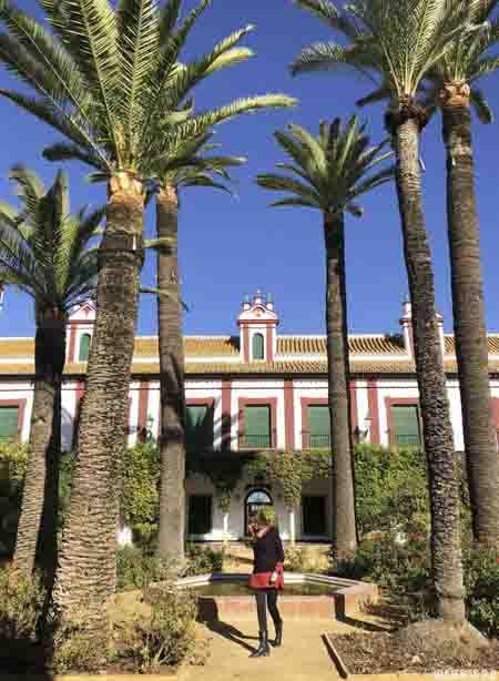 Visita oleoturismo Hacienda Guzmán en Sevilla.