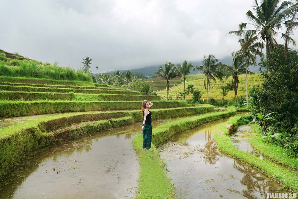 Arrozales deJatiluwih, qué ver en Bali en una semana, Indonesia.