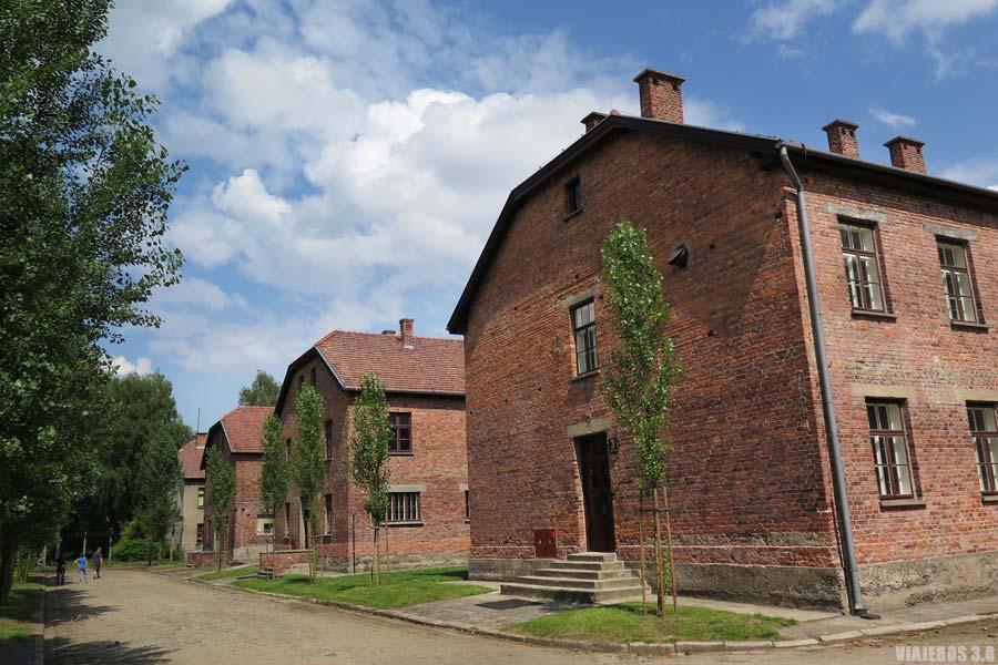 Pabellones durante la visita guiada en español a Auschwitz