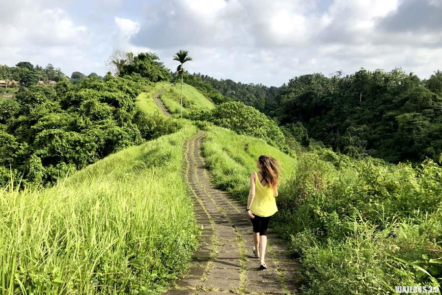 Imprescindibles que hacer y que ver en Ubud, Bali