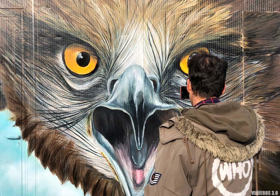 Águila Culebrera, murales de Tubilla del Lago