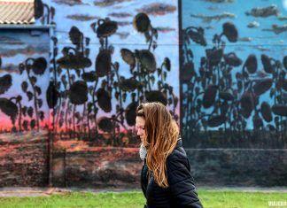 Murales de Tubilla del Lago en Burgos