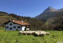 Aralar, un lugar increíble que visitar en el País Vasco