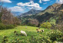 Escapada en Cantabria de fin de semana