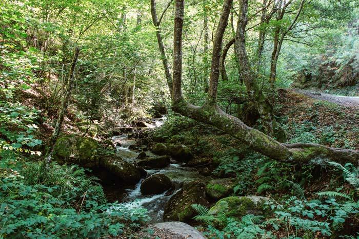 Rutas en el Valle del Silencio, León