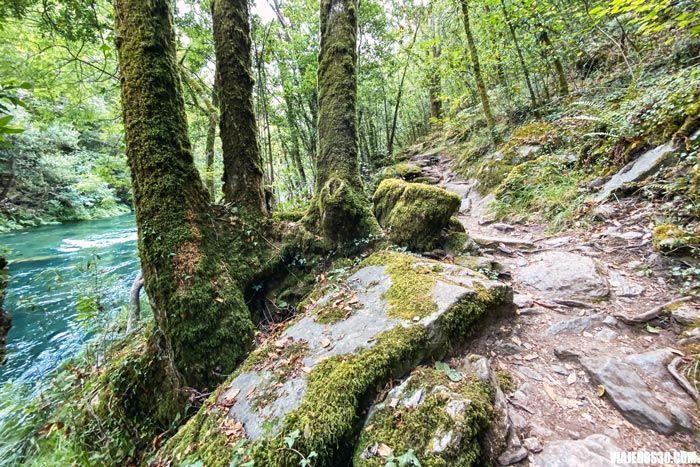 Las mejores rutas de senderismo en Fragas do Eume.