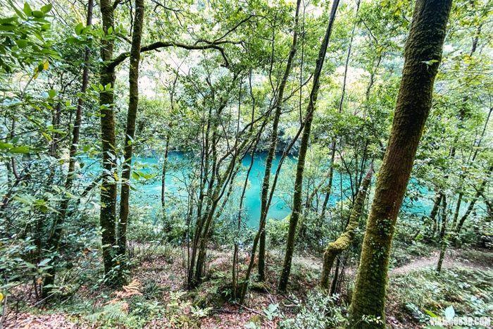 Rutas en Fragas do Eume, Galicia.
