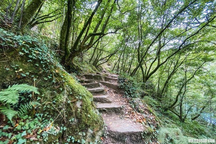 El Camino da Ventureira, rutas en Fragas do Eume.