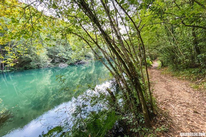 Agua esmeralda del río Eume.
