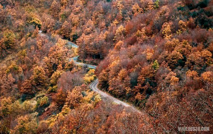Carretera en otoño en León