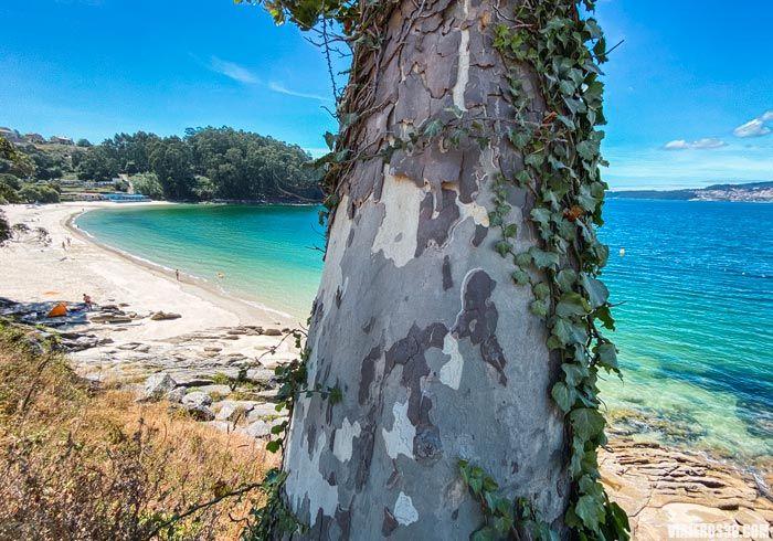Playa de Mogor en Galicia