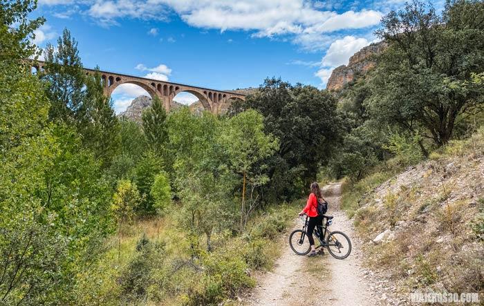 Viaducto abandonado, Hoces del río Riaza.