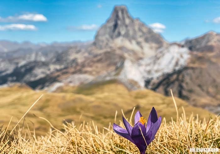 Pico Midi d´Ossau en el Parque Nacional de Los Pirineos.